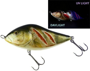 0001_Salmo_Slider_10_cm_[Wounded_Real_Perch].jpg